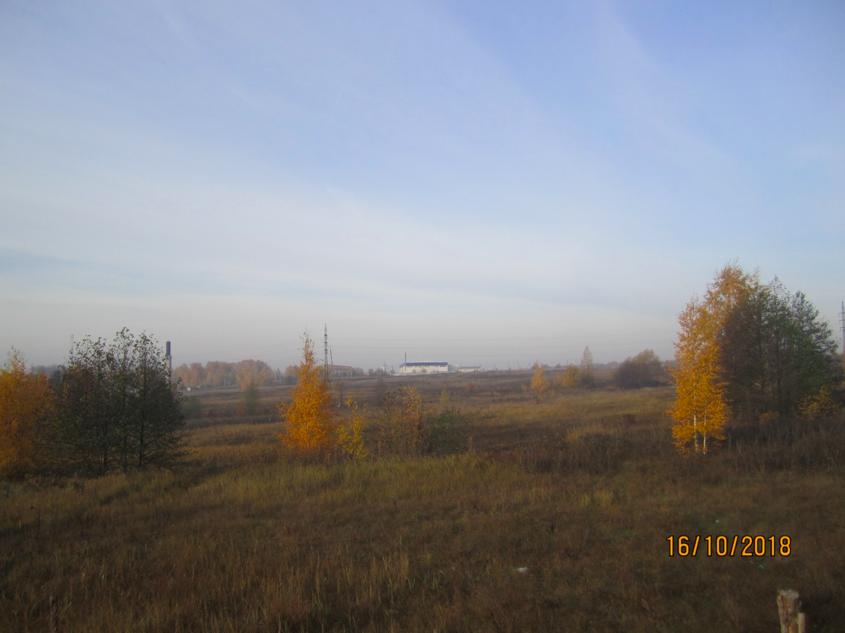 БЕРЕЗКА, Владимирская область Петушинский район Петушинское сельское поселение